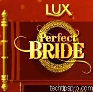Lux Perfect Bride logo