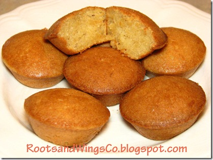 gfcf parsnip muffins R&W