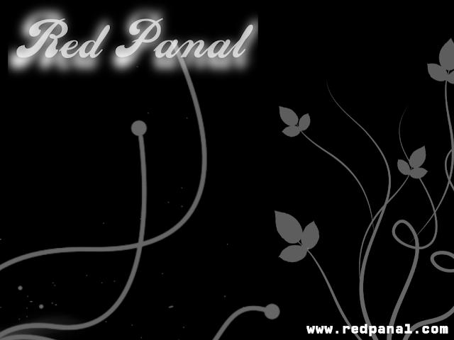 RedPanal Negro