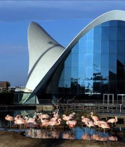 Oceanorgrafic, недвижимость в Испании