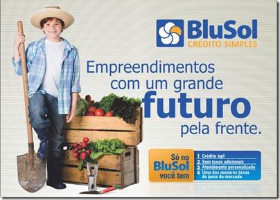 Blusol - Flyer 2