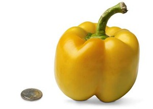 18-bell-pepper