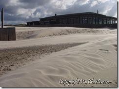 P8192657 Henne strand