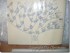 Allans stamtræ