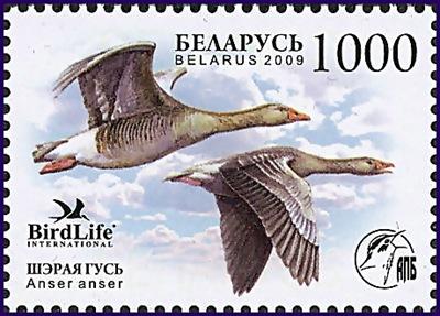 bel200901l