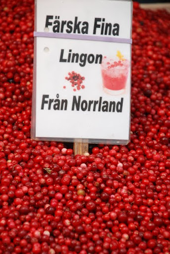 lingonberries in sweden