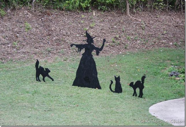 Yard Witch  (47)