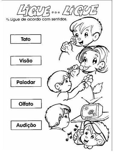 Actividades de ciencias para ni os for Actividades con cartulina para ninos