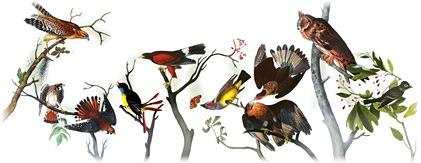 [226th Birthday Of John James Audubon[12].jpg]