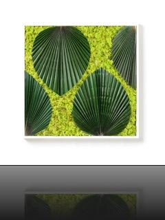 tableau-vegetal-amazone2