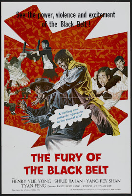 The Fury of the Black Belt (1975, Hong Kong) movie poster