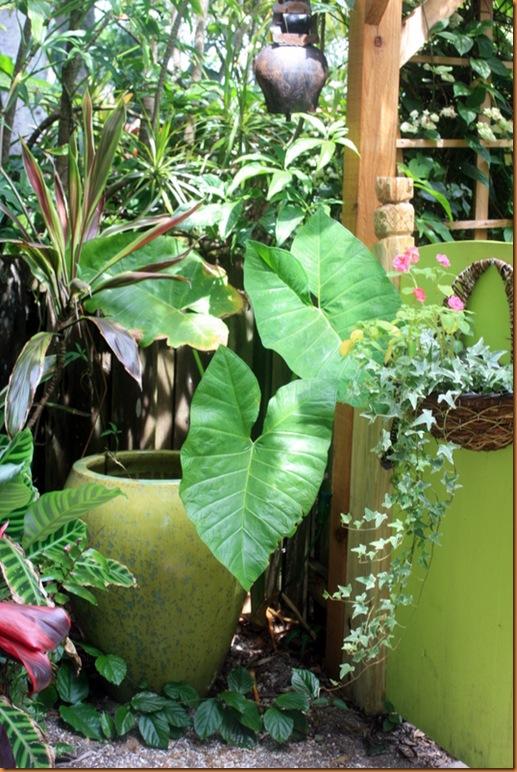 garden 012-1