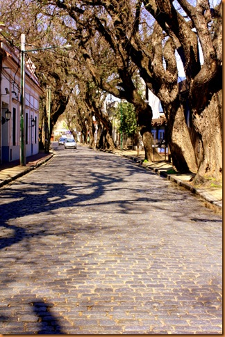 Argentina09 037