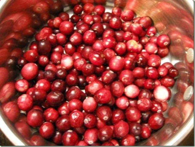 cranberry-stuff-005-400x300
