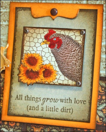 sunflower-seeds-hen--kisa