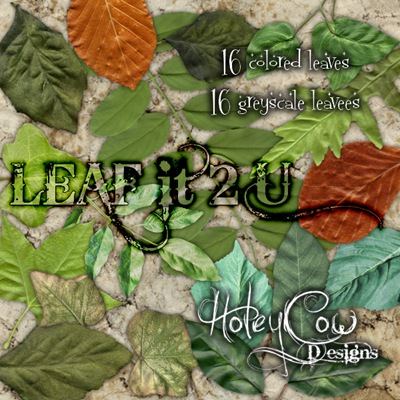 HOLEYCOW_CU_LEAFit2upreview