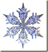 Snowflake_300h