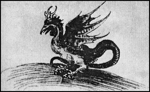 Durero Dragon 1512
