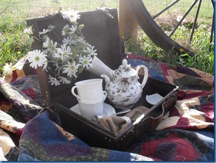 teapot outside 038