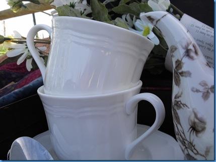 teapot outside 050