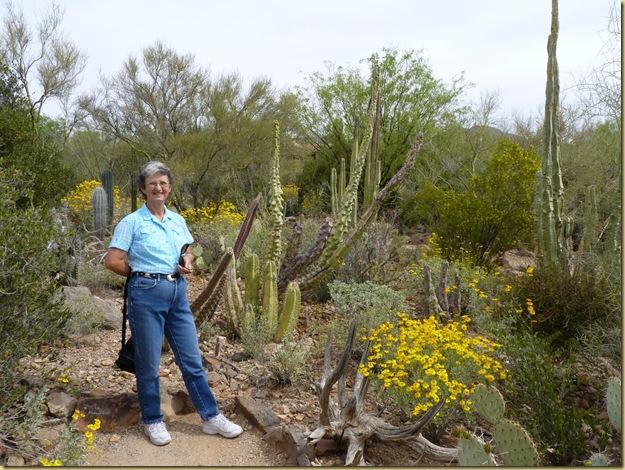 2010-04-16 - AZ, Tucson - Sonoran Desert Museum  (71)