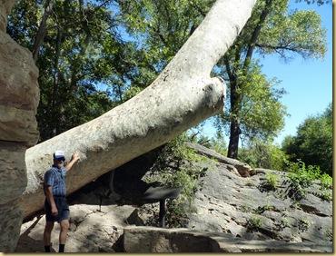 2010-09-24 - AZ, Montezuma's Well -  1036