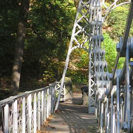 The Silver Bridge by Marcia Taylor - City,  Street & Park  City Parks (  )