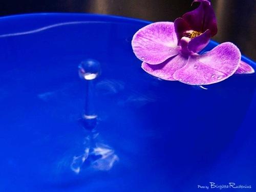 test_20110208_G9_vattendropp