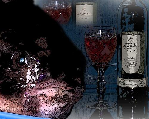 pm_fisk_vin