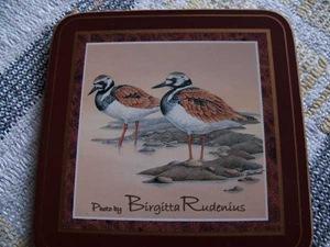 pm_20110413_birds1a