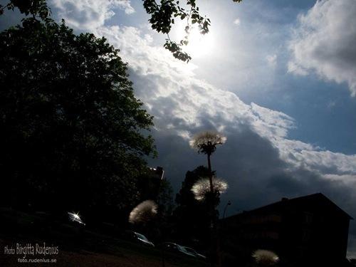 lund_20110513_west