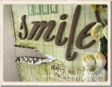 your smile LO closeup1