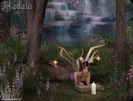 Hadalu_bosquesdehadas2