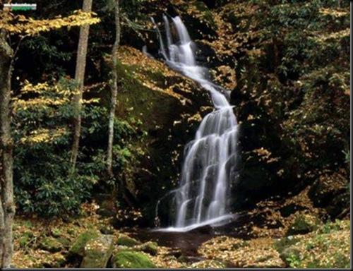 ElTALLERDELABRUJAMAR_Mouse Creek Falls, Great Smoky