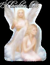 ElTambien_angel701