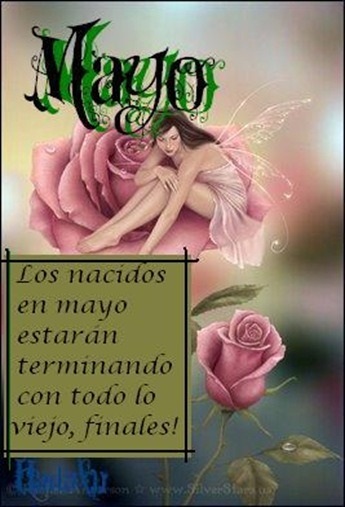 Hadalu_mayo