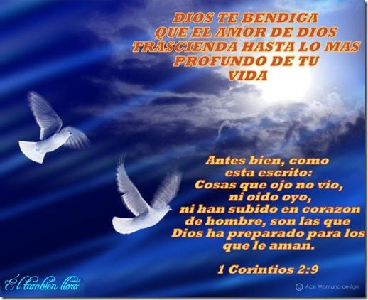 ElTambienLLoro_11tarjetascristianas6