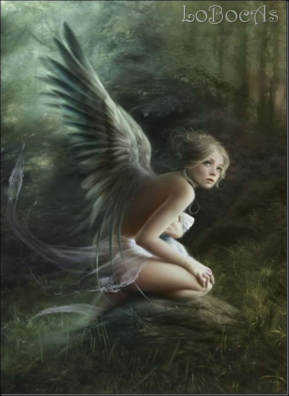 LoBocAs-angel0007