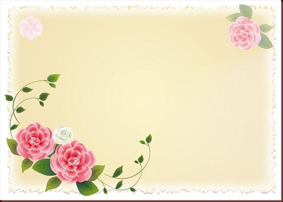 plantilla 15_01