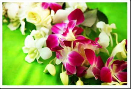 hawaiian-lei