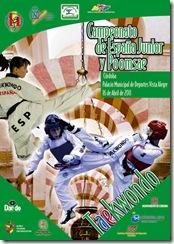 Cartel Campeonato Andalucía copia VERSION 3