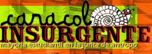 Caracol Insurgente - La Juntada en antropo - FFyL
