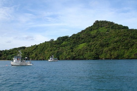 coiba