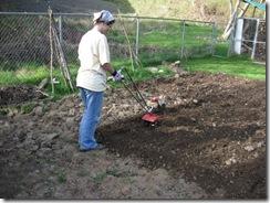 garden tilled 04