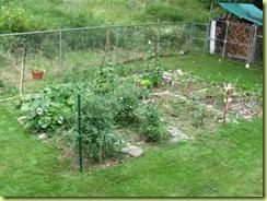 garden progress 01