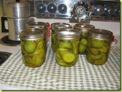 pickling 07