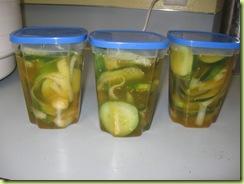 pickles 05
