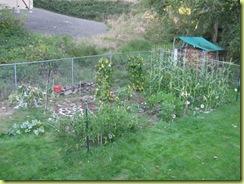 garden round 2 16