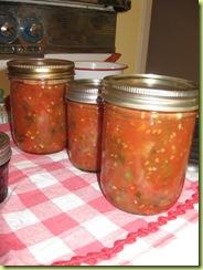 salsa 01