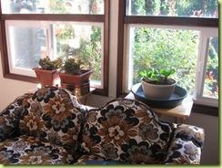 living room garden 01